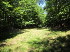 Private 15.6 Acre Lot - Vacant Lot W/Electric & Well