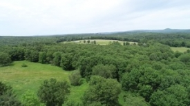90+ Acres in the Catskills - Large Agricultural Parcel in the Catskills