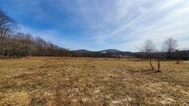 Land with Views in Kortright - Big Sky Southerly Views