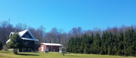 Country Living - 161+ Acres