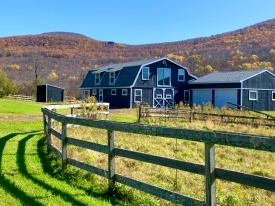 BARN ENVY - Bucolic Setting with Views