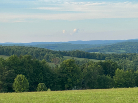 Views-Open Meadows-Woods - 50 Acres