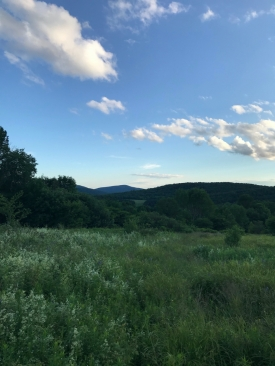 Open Meadow with Mountain Stream! - Panoramic Views!