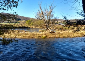 Land For Recreation and Solitude in Hamden - Ideal for Fishing, Hunting, Hiking , Camping