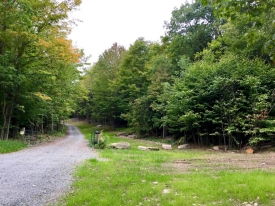 Stunning 28.10 Acre Lot Adjoing 111 Acres of NYC Land - Beautiful 28.10 acres ajoining 111 acres of NYC Land